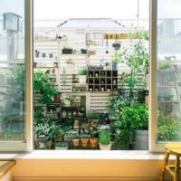 ベランダやテラスで楽しむグリーン&インテリア特集!家族で楽しめる癒しのスペースを作ろう☆