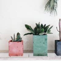 グリーンのある暮らしに憧れて☆プチプラでインテリアグリーンを素敵に飾るアイディア集