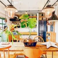 『おうち緑化計画』で癒しの空間へ☆グリーンに囲まれたお部屋のアイデア21選