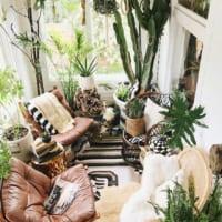 植物が空間を彩るエッセンスに♡海外インテリアにも『グリーン』が欠かせない!