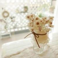 ガラス花器のある生活♡花瓶やサーバー、鉢など花器を活かしたインテリア