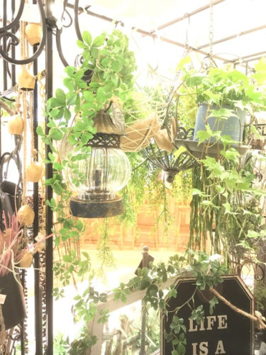 話題の多肉植物ガーデンをDIYしよう18