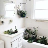 憧れのオシャレな洗面化粧台!普通とはちょっと違う素敵な洗面化粧台をご紹介!