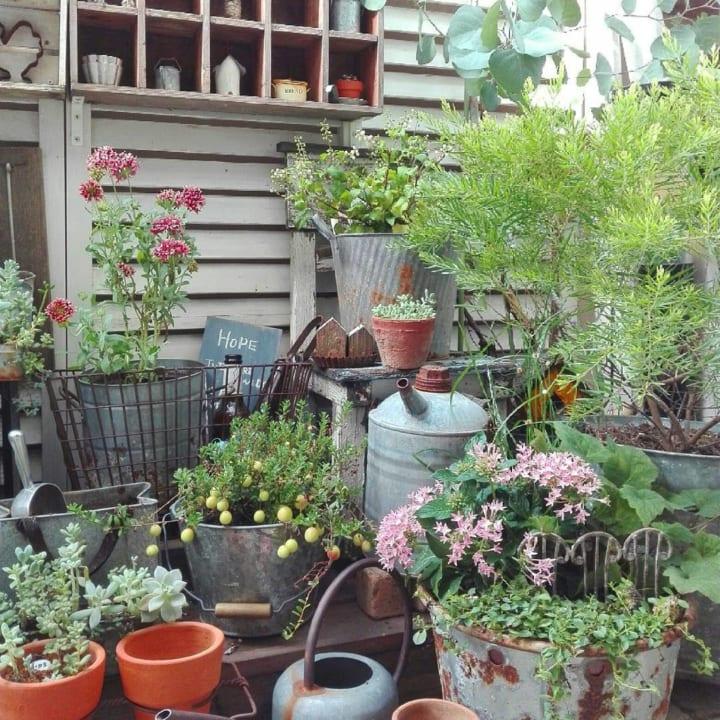 お庭に柵や棚、室外機カバーをDIYしよう!7