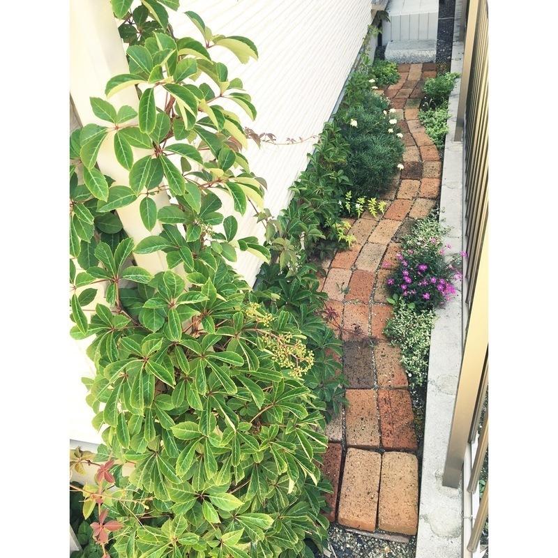 庭にレンガや石・枕木で小道やパティオをDIY!5