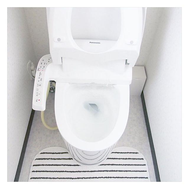 トイレ 便器の中