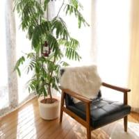 テイスト別くつろぎチェア&スツール15選!自分好みのリラックスできる空間作り!