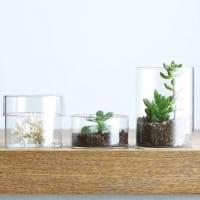 もっとガラスを楽しもう♪お部屋に取り入れたいガラスアイテム特集