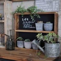 春を先取り♪グリーンづかいがポイントのカフェ風おしゃれインテリアコーデ