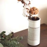 冬のお部屋を彩る♪あったかインテリアにぴったりな観葉植物まとめ