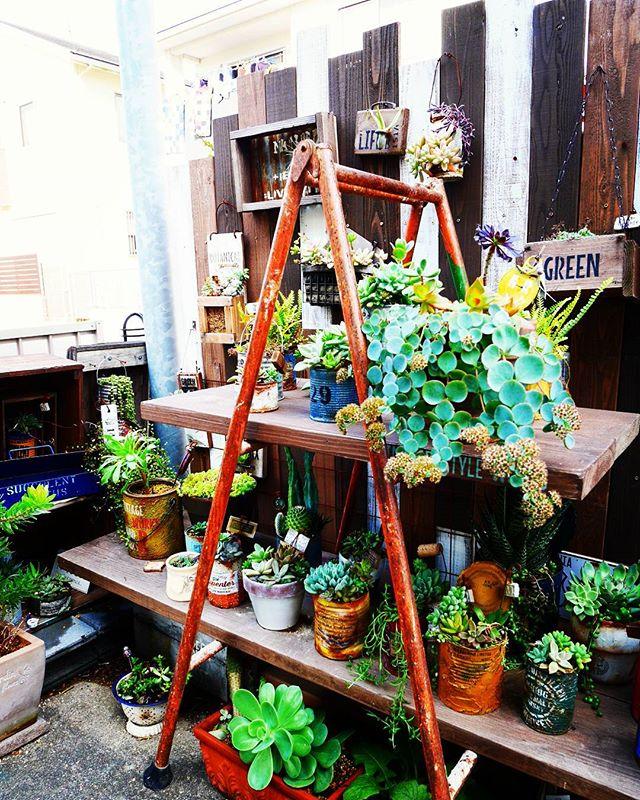 簡単DIYで手軽に屋外収納スペース