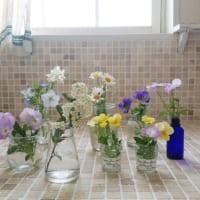 季節の贈り物♪春のお花を素敵にアレンジメントするアイデア
