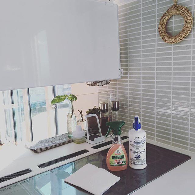 キッチンの換気扇掃除2