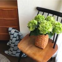 カラフルな紫陽花でお部屋を彩る♡生花・リース・ドライフラワーの飾り方まとめ