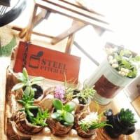 100均DIYでグリーンを飾ろう!木枠や金網のおしゃれな活用アイディア8選☆