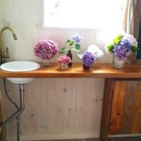色々なディスプレイで長く楽しめる♪紫陽花を部屋に飾ってみませんか?