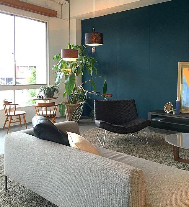 カラーウォールで家具が映える空間作り