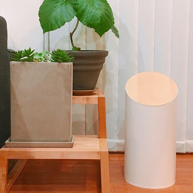 リビングなどの生活空間は「馴染み」能力が強いゴミ箱を8