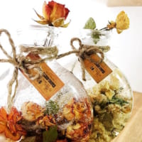 品格のある華やかさが魅力♡生花やドライフラワーを使ったバラの飾り方をご紹介