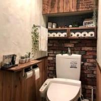 きっとあなたも真似したくなる♪トイレ掃除アイディア&インテリア実例10選☆