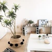 【IKEA・無印良品・100均etc.】梅雨が来るその前に、涼し気で心地よいお部屋作りをしてみませんか?