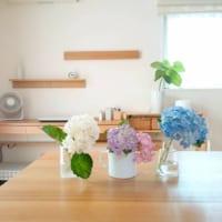 可愛らしい紫陽花を飾って♡紫陽花を取り入れたおしゃれなディスプレイ方法まとめ