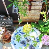 涼しげに花を飾る♪夏にぴったりな水を使ったディスプレイアイディア