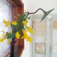花&グリーンのある暮らしをもっと手軽に♡お家にあるアイテムで楽しめるアイディアをご紹介