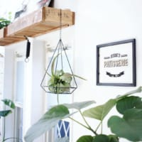 お部屋をもっとナチュラルに見せたい♪観葉植物&フェイクグリーンのおしゃれな飾り方