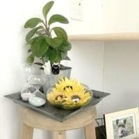 夏の花で季節を感じよう。紫陽や向日葵を飾って素敵なお部屋に大変身!