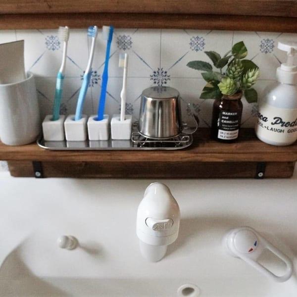歯ブラシ収納 100均10
