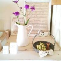 アンティークな雰囲気で植物を楽しむ!ホーローとグリーンを使ったディスプレイ