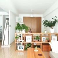素敵な一人暮らしインテリア♡『好き』に囲まれたお洒落インスタグラマーさんたちのお部屋を拝見!