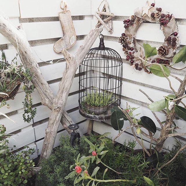 鳥かごを庭で使う
