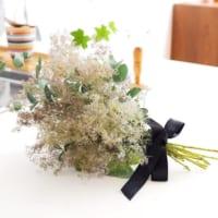 ふわふわの穂が可愛い!スモークツリーをお部屋に飾って柔らかな空間にチェンジしよう