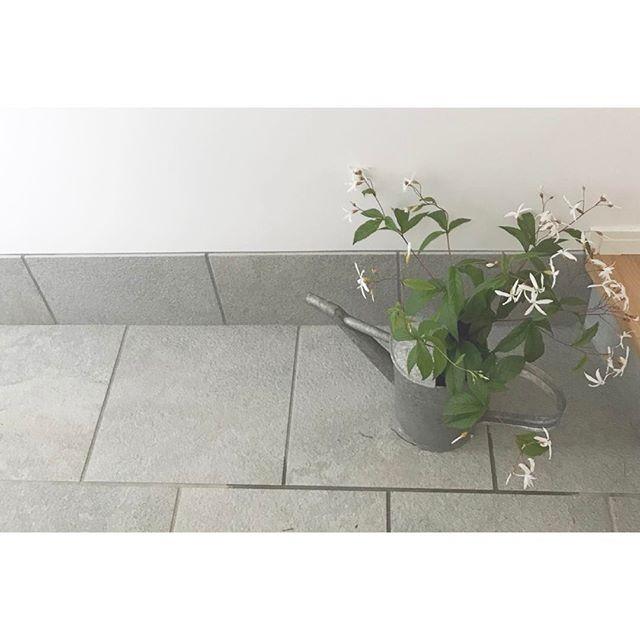 ジョウロにお花を入れてディスプレイ