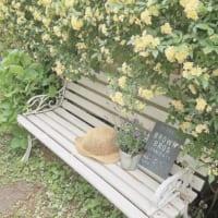 玄関ポーチやお庭に置いて外国の雰囲気に♡色々なガーデンベンチ8選