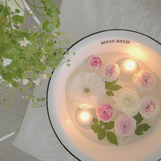 バラの香りで男性も魅了する