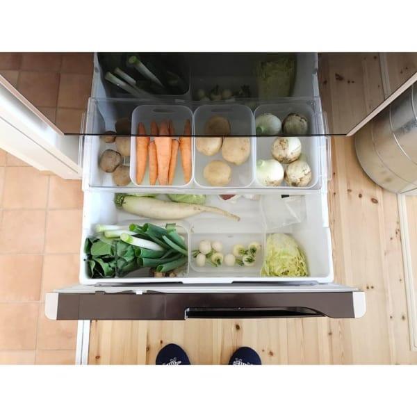 冷蔵庫の「冷凍庫・野菜室」の収納に使おう!2