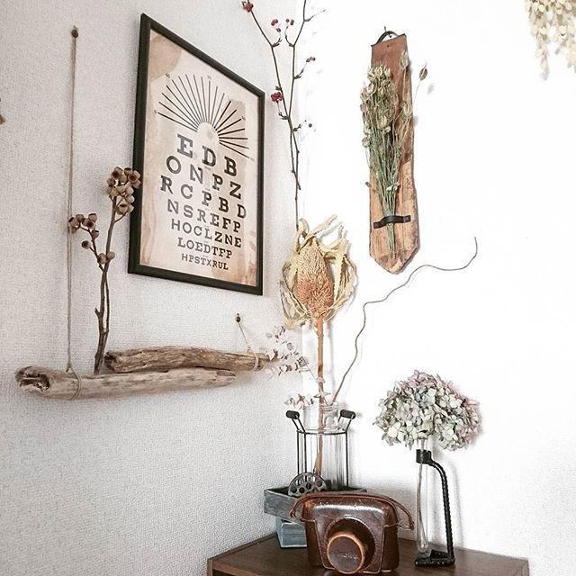 植物を飾る2