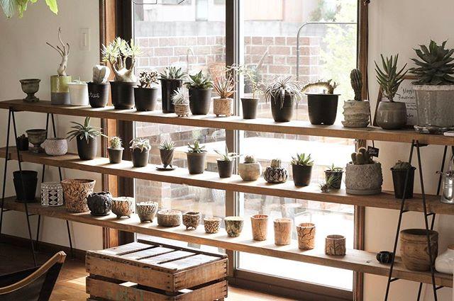 植木鉢や花瓶に陶器を使ってしまおう!2