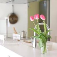 目指すは憧れのお花があるお家!フラワーインテリアと相性の良い場所は?
