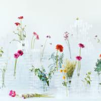 【SNS映え!】簡単に花のある暮らしをDIY!