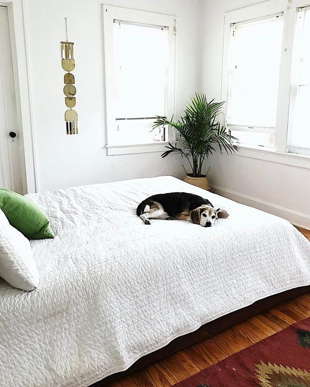 家具は最小限に抑える