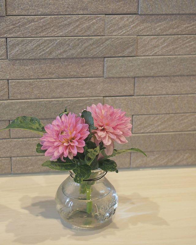 花を買う時に注意すること1