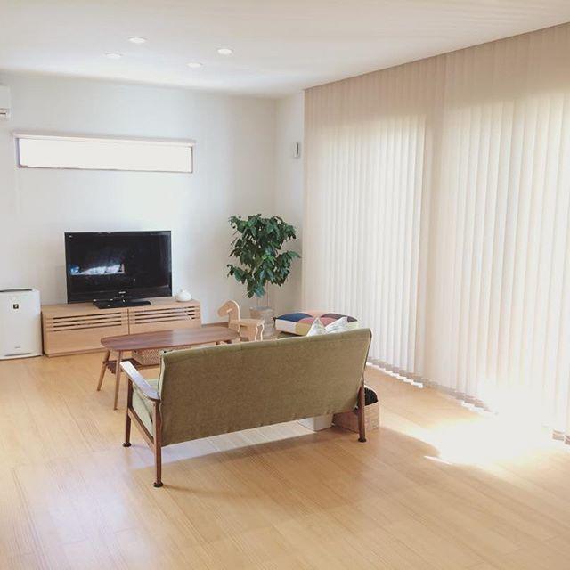日当たりがよい部屋にシンボルツリーを設置2