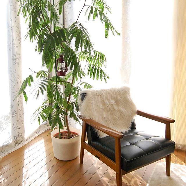 革張りのソファはおしゃれなお部屋にぴったり4