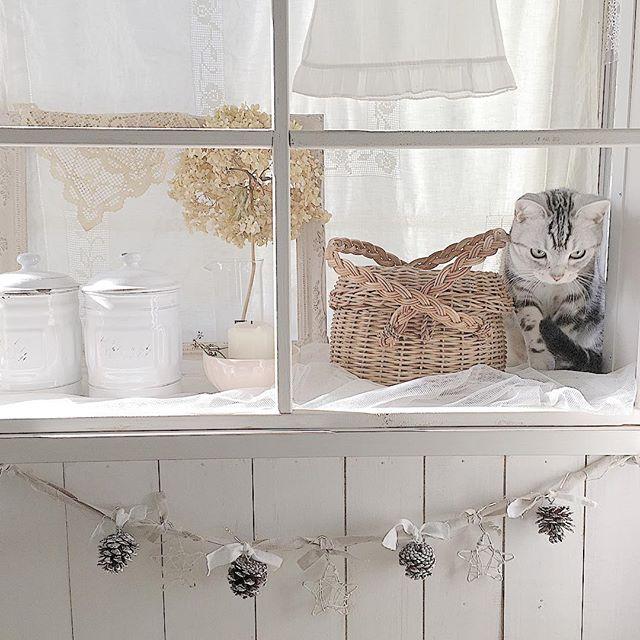 出窓に生活雑貨をレイアウト2