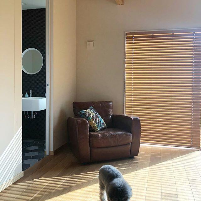 デザイン性のあるソファはお部屋のポイントに3