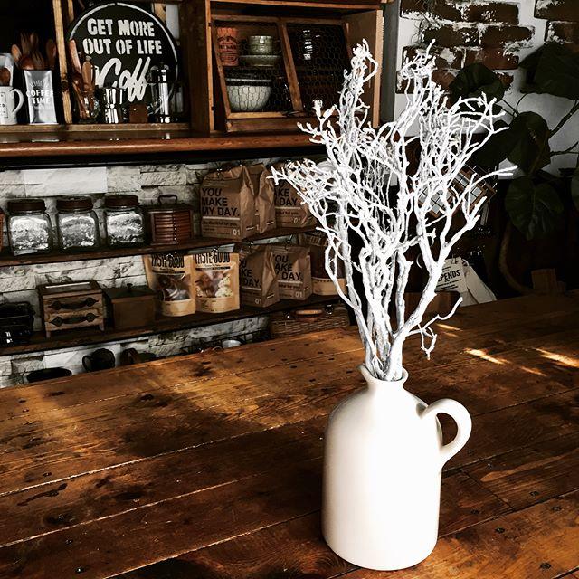 真っ白な枝